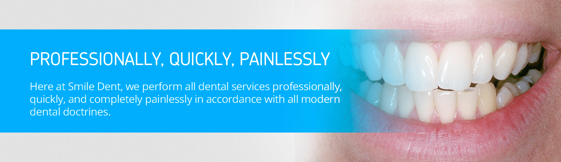 Professionally, Quickly, Painlessly